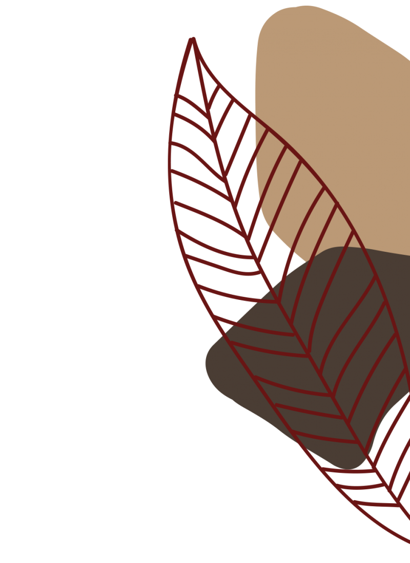 lateral dcho png